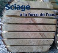 sciage